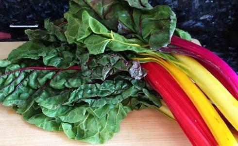 Rainbow chard
